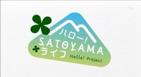 satoyama_11_1.jpg